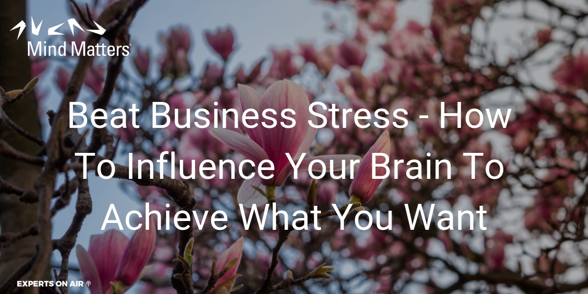 Beat Business Stress - How To Influence Your Brain To Achieve What You Want Social